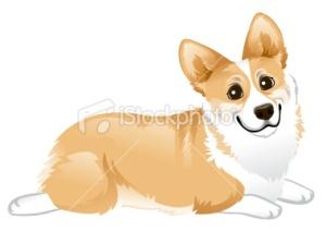 stock-illustration-25007115-corgi-laying-down