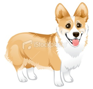 stock-illustration-25007136-corgi-standing