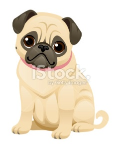 stock-illustration-36440420-cute-pug